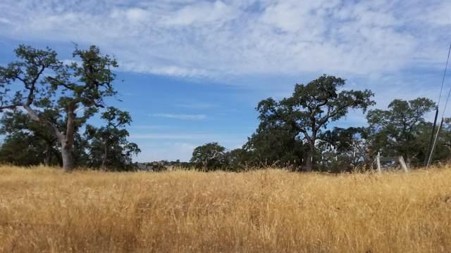 1680 Zarzamora, La Grange, CA 95329 (MLS #221109365) :: 3 Step Realty Group
