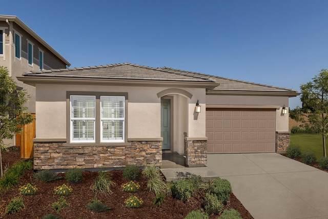 524 Vanek Drive, Oakley, CA 94561 (MLS #221110476) :: Heather Barrios