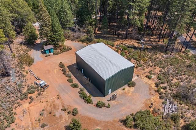 18432 Pine Bark Lane, Mokelumne Hill, CA 95245 (MLS #221111516) :: ERA CARLILE Realty Group