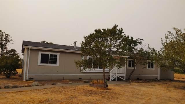 10838 Alta Mesa East Road, Wilton, CA 95693 (MLS #221111885) :: Deb Brittan Team
