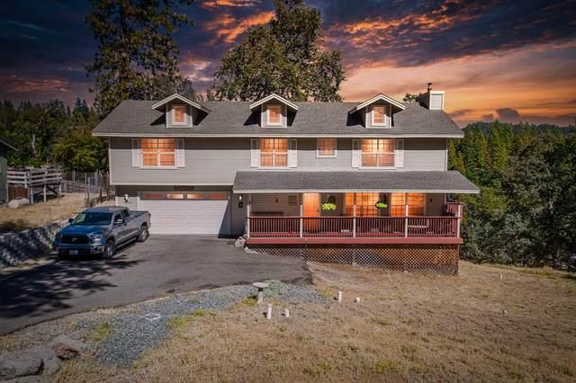 16560 S Silver Drive, Pioneer, CA 95666 (MLS #221111951) :: Heidi Phong Real Estate Team