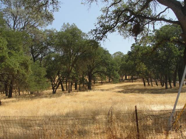 7273 Westhill Road, Valley Springs, CA 95252 (MLS #221112548) :: REMAX Executive