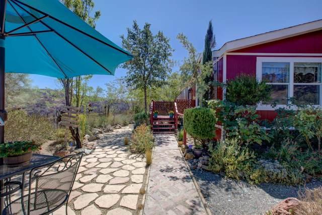 11700 Del Puerto Canyon Road, Livermore, CA 94550 (MLS #221113103) :: DC & Associates