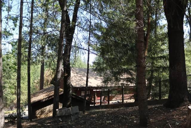 7085 Bunker Hill Mine Road, Oroville, CA 95965 (MLS #221113396) :: Keller Williams - The Rachel Adams Lee Group