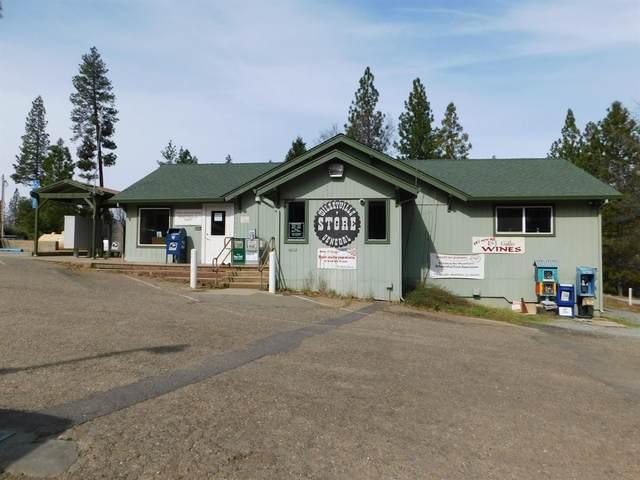 4052 Blizzard Mine Road, Wilseyville, CA 95257 (MLS #221113445) :: Jimmy Castro Real Estate Group