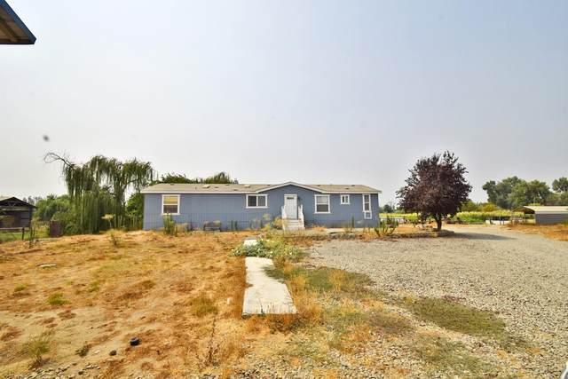 1703 Vivian Road, Modesto, CA 95358 (MLS #221114771) :: DC & Associates