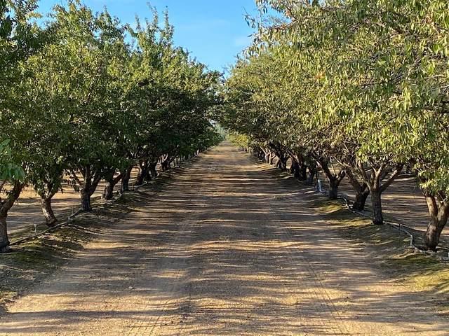 1740 Reilly Road, Merced, CA 95341 (MLS #221116221) :: Keller Williams - The Rachel Adams Lee Group