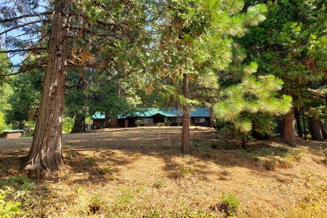 10695 Forbestown Road, Challenge, CA 95925 (MLS #221116456) :: Keller Williams - The Rachel Adams Lee Group
