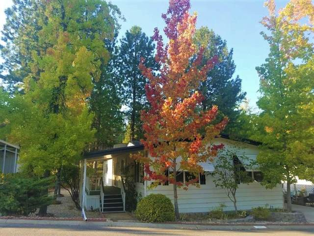 10100 Hidden Springs Drive, Grass Valley, CA 95949 (MLS #221116484) :: 3 Step Realty Group