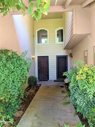 183 Tiffany Circle, Ripon, CA 95366 (MLS #221117726) :: REMAX Executive