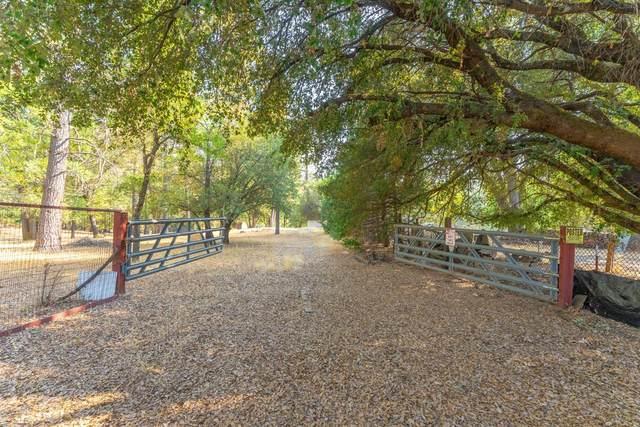 7089 Perry Creek Road, Somerset, CA 95684 (MLS #221117766) :: REMAX Executive