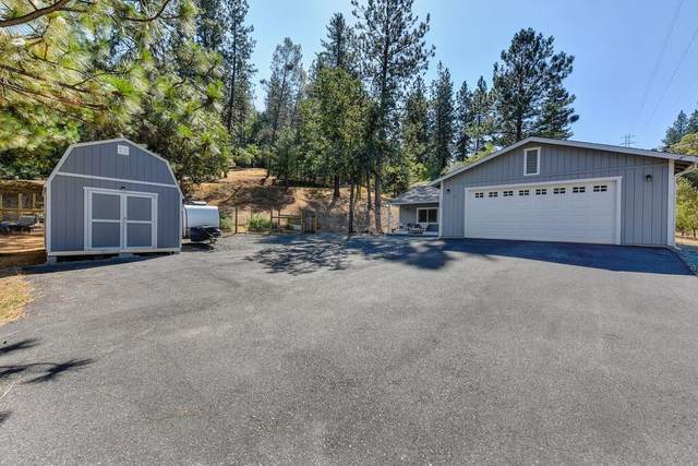 17959 Alexandra Way, Grass Valley, CA 95949 (MLS #221118134) :: REMAX Executive