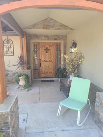 2000 Tradingpost Court, Elverta, CA 96825 (MLS #221118156) :: Heidi Phong Real Estate Team