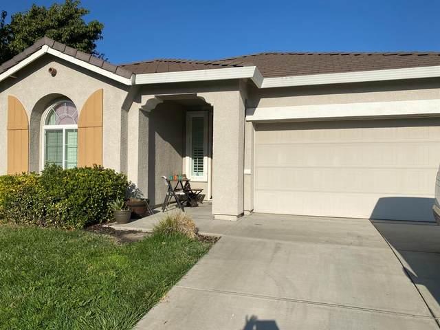 10408 Tyke Drive, Stockton, CA 95209 (MLS #221118336) :: REMAX Executive