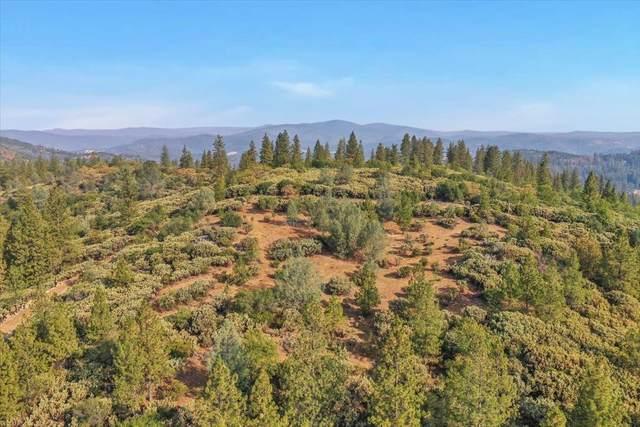 13742 Jeabjo Way, Nevada City, CA 95946 (MLS #221119313) :: Keller Williams - The Rachel Adams Lee Group
