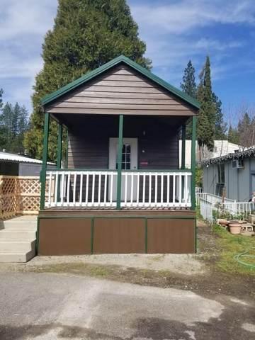 4482 Moran Rd, Avery, CA 95224 (MLS #221119450) :: ERA CARLILE Realty Group