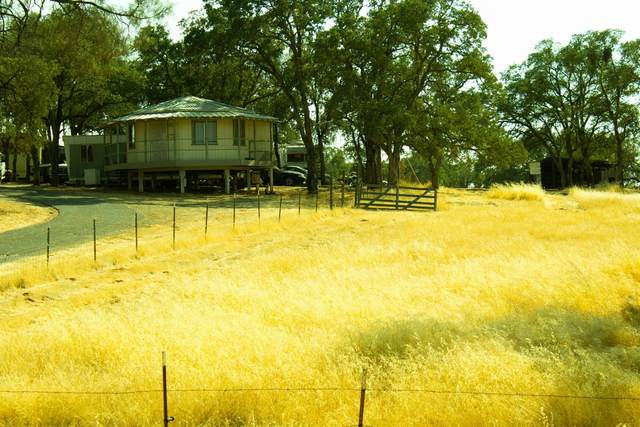 3692 State Hwy 132, Coulterville, CA 95311 (MLS #221119906) :: DC & Associates