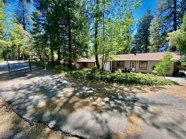 6424 Red Robin Road, Placerville, CA 95667 (MLS #221120050) :: REMAX Executive