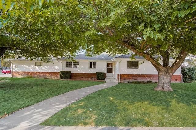 216 Cynthia Drive, Colusa, CA 95932 (MLS #221120156) :: Heidi Phong Real Estate Team