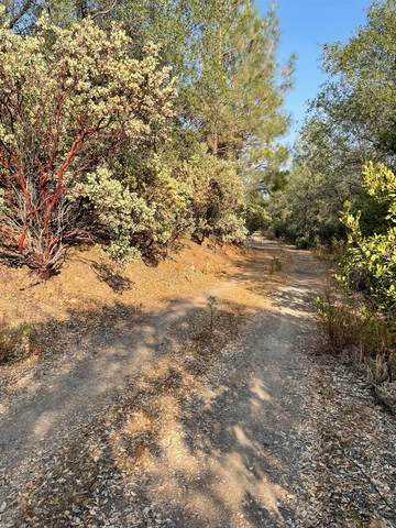 0 SE Ridgeview Circle, Sutter Creek, CA 95685 (MLS #221120208) :: Keller Williams - The Rachel Adams Lee Group