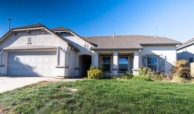 3325 Baker Way, Live Oak, CA 95953 (MLS #221120549) :: The Merlino Home Team