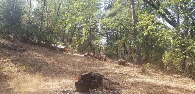 0 Chamberlain, Placerville, CA 95667 (MLS #221121300) :: Dominic Brandon and Team