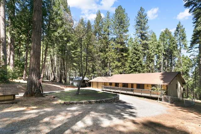 2391 Old Blair Mill Road, Pollock Pines, CA 95726 (MLS #221121369) :: REMAX Executive