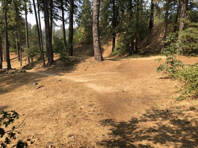 0 Pleasant Street, Grass Valley, CA 95945 (MLS #221122520) :: The MacDonald Group at PMZ Real Estate