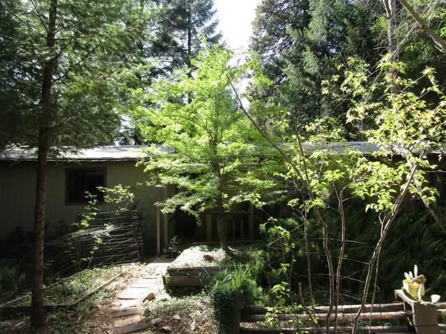 15805 Sleighville Creek Road, Camptonville, CA 95922 (MLS #221122577) :: REMAX Executive