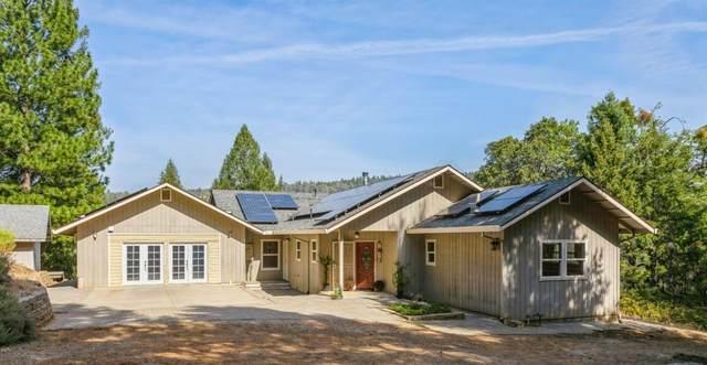 2100 Snowflower Lane, Placerville, CA 95667 (MLS #221122741) :: Heidi Phong Real Estate Team
