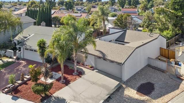 2223 Grouse Way, Union City, CA 94587 (MLS #221122809) :: Live Play Real Estate | Sacramento