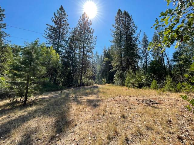 0 Jarvis, Foresthill, CA 95603 (MLS #221122903) :: The Merlino Home Team