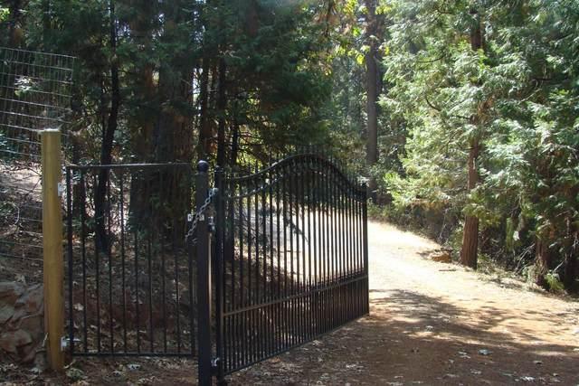5070 Hotchkiss Hill Road, Georgetown, CA 95634 (MLS #221123067) :: ERA CARLILE Realty Group