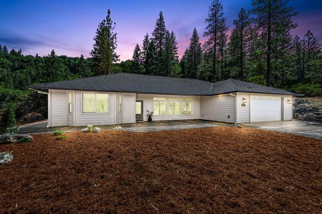 3960 Fort Jim Road, Placerville, CA 95667 (MLS #221123112) :: Dominic Brandon and Team