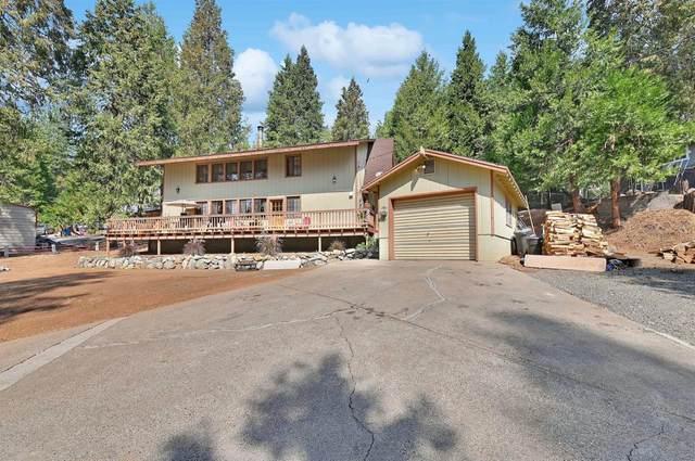 16725 Meadow Vista Drive, Pioneer, CA 95666 (MLS #221123132) :: 3 Step Realty Group