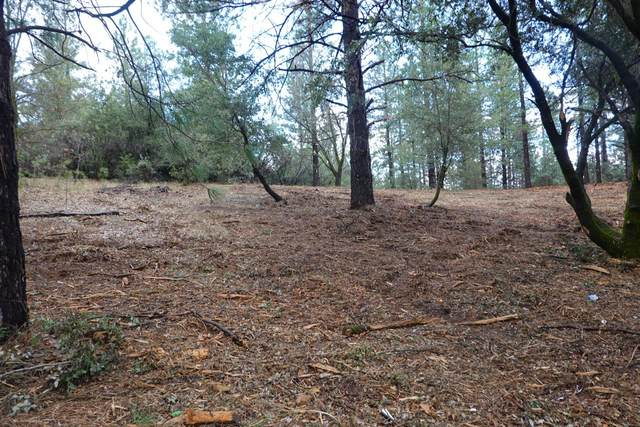 0 Siems And Grandview, Colfax, CA 95713 (MLS #221123304) :: 3 Step Realty Group