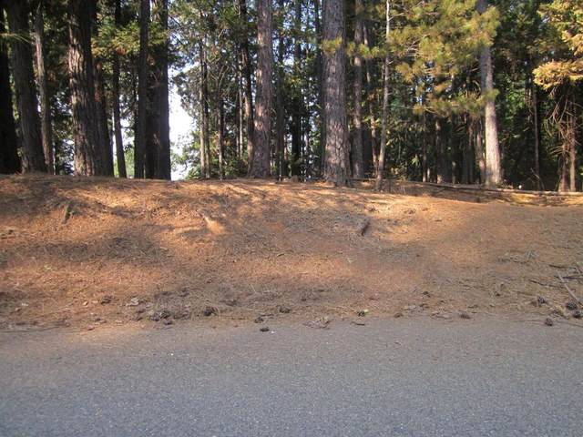 0 Pioneer Drive, Grizzly Flats, CA 95636 (MLS #221123608) :: Heather Barrios