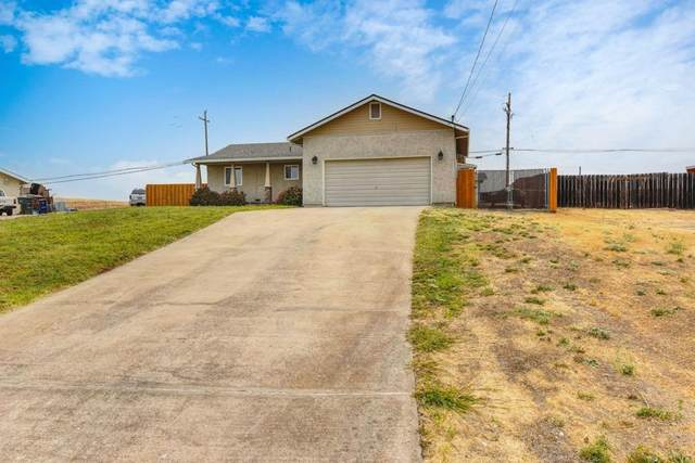 4173 Teton Court, Ione, CA 95640 (MLS #221123722) :: 3 Step Realty Group