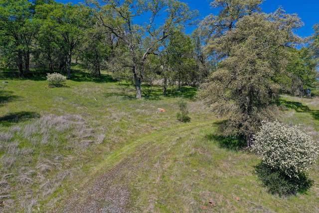 13 Township Road, Browns Valley, CA 95918 (MLS #221124186) :: Heather Barrios