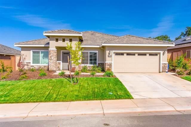 1427 St Andrews Lane, Ione, CA 95640 (MLS #221124591) :: Live Play Real Estate   Sacramento