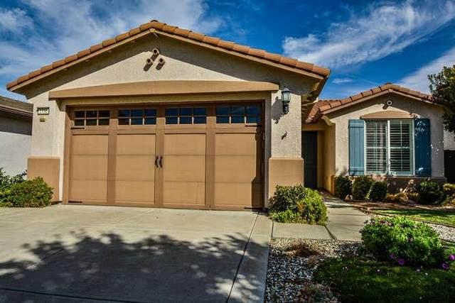 2336 Shadow Berry Drive, Manteca, CA 95336 (MLS #221124741) :: DC & Associates