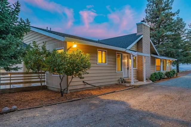 13711 Running Gold Rd, Sutter Creek, CA 95685 (MLS #221125081) :: DC & Associates