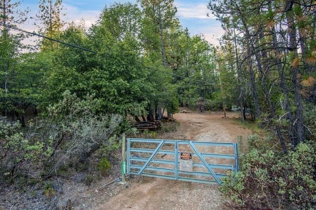 16621 Greenhorn Road, Grass Valley, CA 95945 (MLS #221126594) :: Live Play Real Estate | Sacramento