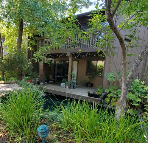 943 Fulton Avenue #515, Sacramento, CA 95825 (MLS #221126679) :: DC & Associates