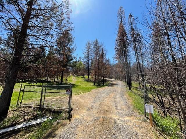 646 Bald Rock Road, Berry Creek, CA 95916 (MLS #221126839) :: Heather Barrios