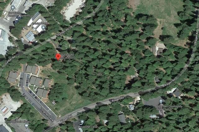 1209 Dunbar Road, Arnold, CA 95223 (MLS #221127051) :: DC & Associates