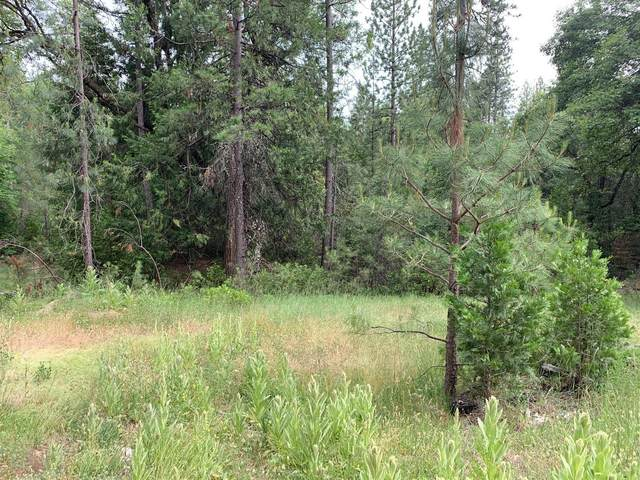 9432 Grizzly Flat Road, Grizzly Flats, CA 95636 (MLS #221127582) :: ERA CARLILE Realty Group