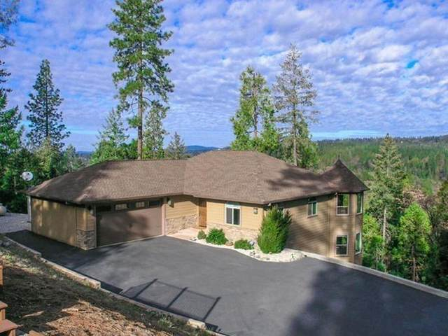 11516 Deer Creek Lane, Nevada City, CA 95959 (MLS #221127753) :: DC & Associates