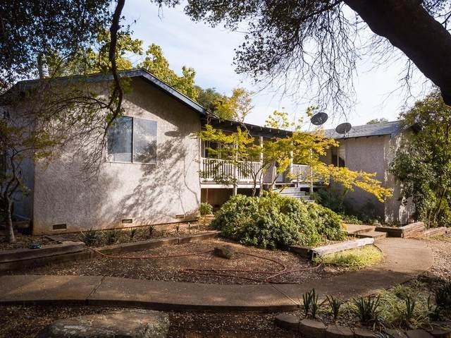15050 Barney Road, Plymouth, CA 95669 (MLS #221127825) :: 3 Step Realty Group