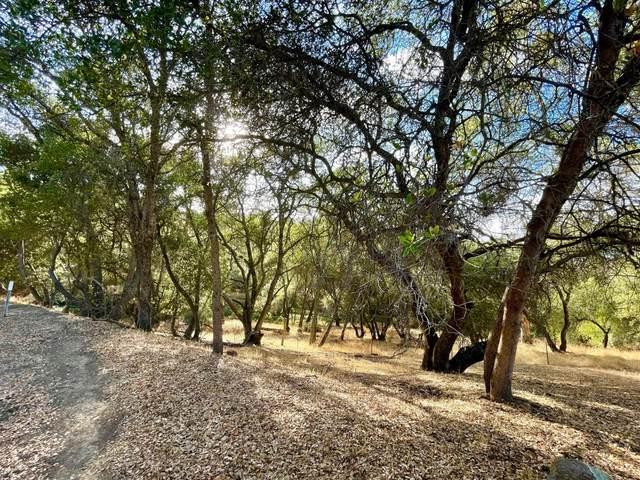 631 Guadalupe Drive, El Dorado Hills, CA 95762 (MLS #221128352) :: Keller Williams Realty
